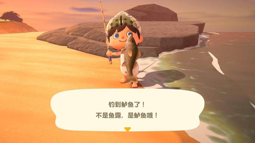 在动森上钓到鲈鱼(网路图片)