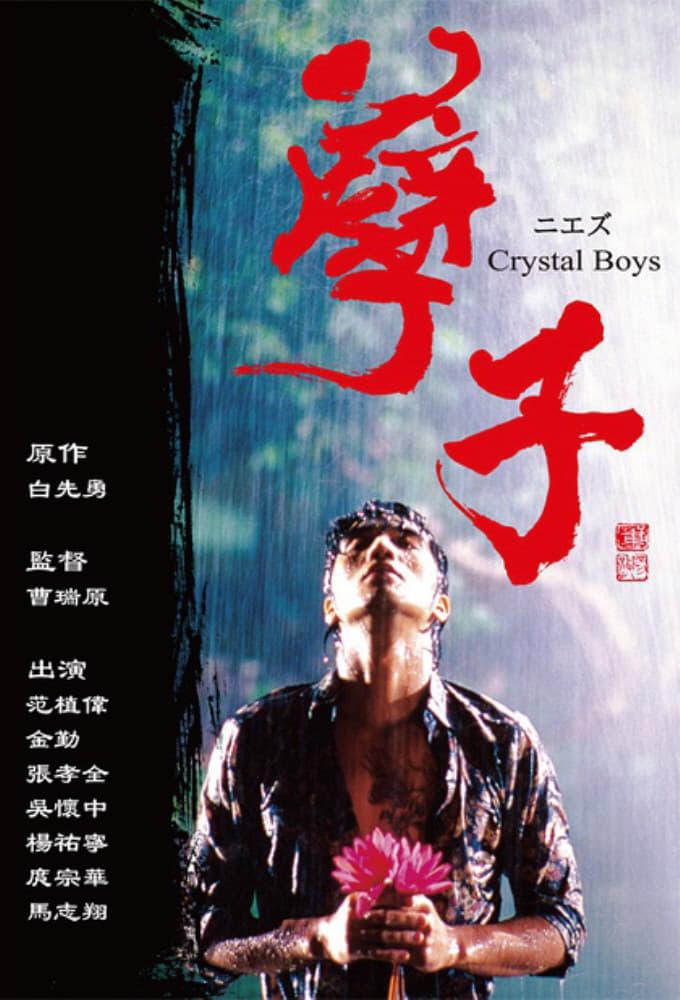 2003年电视剧《孽子》