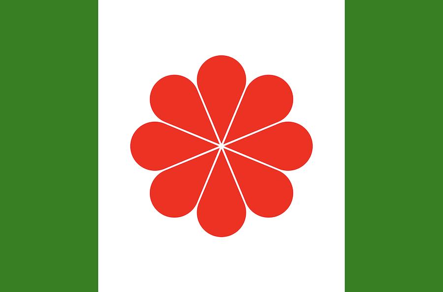 """""""台湾共和国台湾同心旗"""""""